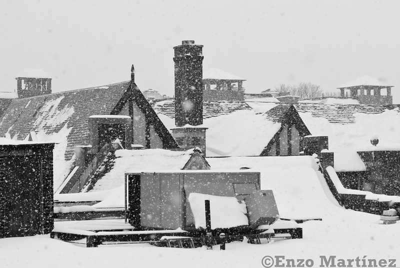 jackson-heights-winter-snow-rooftop-black-and-white