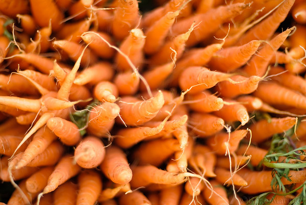 carrots-jackson-heights-farmers-market